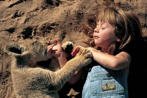 tippi-degre-special-bond-with-animals